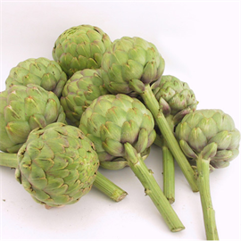 Vegetable seed-Artichoke